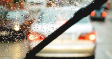 Windshield Protection Tips
